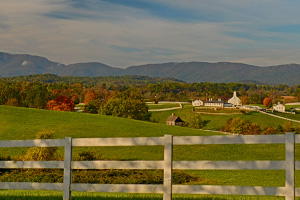 Albemarle County VA Farms for Sale