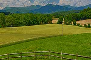 Madison County Virginia Farms for Sale