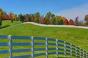 Orange Virginia  Farms for Sale